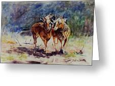 Horses On Work Greeting Card
