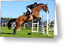 Horses Races Greeting Card