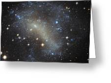 Hubbles Frenzy Of Stars Greeting Card