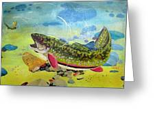 Hungry Trout Greeting Card by Clyde J Kell
