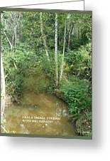 I Am A Small Stream With Big Impact Greeting Card