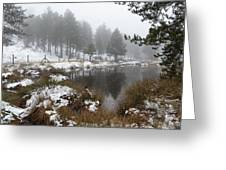 Idyllic Winter Forest Landscape  At Troodos Mountains, Cyprus Greeting Card by Michalakis Ppalis
