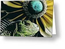 Iguana And Sunflower Greeting Card