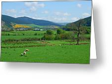 Innerleithen And Tweed Valley Looking East Greeting Card