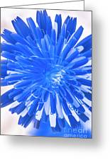 Inverse Flower Art Greeting Card