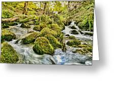 Janet's Foss Flow  Greeting Card