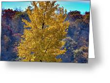 Jogger On Trail In Fall Greeting Card by Dan Friend