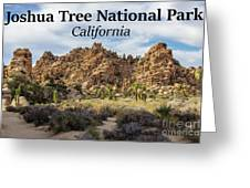 Joshua Tree National Park Box Canyon, California Greeting Card