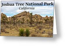 Joshua Tree National Park, California 03 Greeting Card