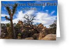 Joshua Tree National Park, California Box Canyon 02 Greeting Card