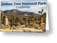 Joshua Tree National Park Valley, California Greeting Card
