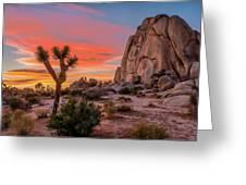 Joshua Tree Sunset Greeting Card
