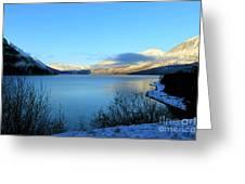 Kenai Lake Primrose Kenai Peninsula Alaska Greeting Card