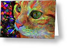 Koko The Orange Cat Greeting Card
