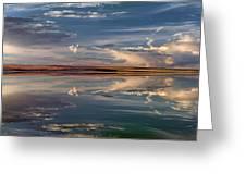 Lake Abert 4 Greeting Card