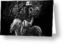 Lamb Greeting Card by Clint Hansen