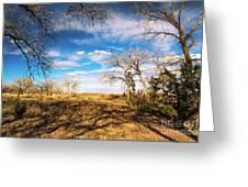Land Of Enchantment Greeting Card