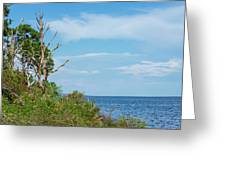 Landscape By The Sound Greeting Card