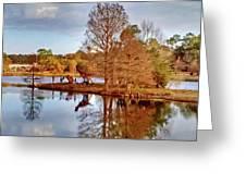Langan Park Island Reflections Greeting Card
