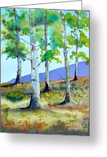 Late Summer Aspens Greeting Card