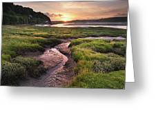 Laugharne Estuary At Sunrise Greeting Card by Elliott Coleman