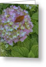 Leaf And Pink Greeting Card