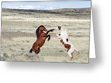 Let's Fight Greeting Card by Ronnie and Frances Howard