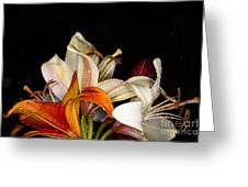 Lilies In A Garden Macro Greeting Card