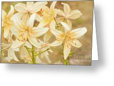 Lilycrest Dainties Greeting Card