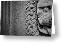 Lion Statue Portrait Greeting Card by Nathan Bush