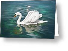 Lone Swan Lake Geneva Switzerland Greeting Card