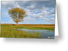 Lone Tree By A Wetland Greeting Card