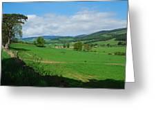 looking westwards in Tweed valley Greeting Card