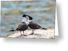 Love Birds Greeting Card by Dheeraj Mutha