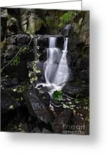 Lumsdale Falls 12.0 Greeting Card