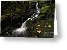Lumsdale Falls 9.0 Greeting Card