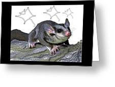 M Is For Mahogany Glider Greeting Card