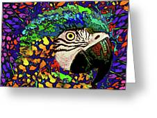Macaw High II Greeting Card