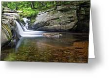 Mad River Falls Greeting Card by Nathan Bush