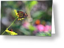 Magical Monarch Greeting Card