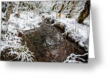 Maisie At The Pond - Winter Greeting Card by Belinda Greb