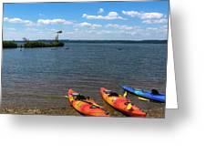 Mallows Bay And Kayaks Greeting Card