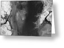 Manistee River Aerial Black And White Panorama Greeting Card