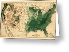 Map Of American Forests 1883 Greeting Card