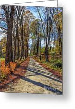 Maple Lane Old Fairgrounds Road Nh Greeting Card