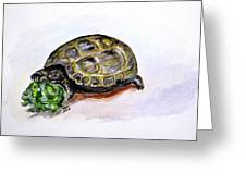 Marshal The Turtle Greeting Card by Clyde J Kell
