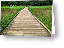Boardwalk At Mccormack's Beach Provincial Park Greeting Card