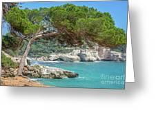 Mediterranean Landscape In Menorca Greeting Card