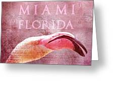 Miami Florida- Pink Flamingo Greeting Card