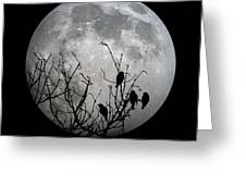Midnight Moonshiners  Greeting Card